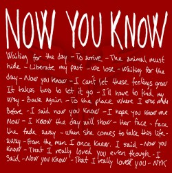 Saint Rebel | Now You Know (Single Cover)